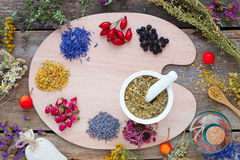 Healing herbs on palette, mortar, tincture and herbs. Stock Image