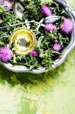 Natural herbs medicine Stock Photography