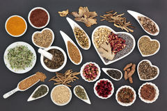 Healing Herbs for Women. Healing herb selection for women used in natural alternative medicine royalty free stock image