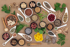 Healing Herbs for Women. Healing herb and spice selection used in natural alternative medicine for women Royalty Free Stock Photography