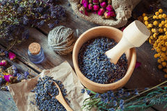 Healing herbs, wooden mortar with lavender, bottles of tincture Stock Photography