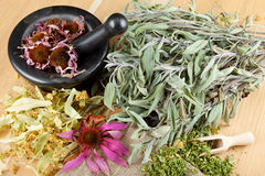 Healing herbs on wooden table, mortar and pestle. Herbal medicine, top view royalty free stock image