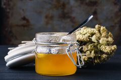 Healing honey with medicine herbs on dark background Royalty Free Stock Images
