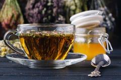 Healing honey with medicine herbs on dark background Royalty Free Stock Photo