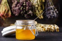 Healing honey with medicine herbs on dark background Stock Photos