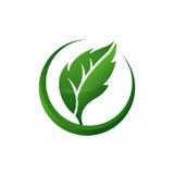 Healing Leaf Icon Royalty Free Stock Photo