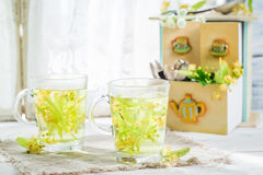 Healing linden tea with honey Stock Images