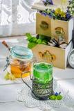 Healing mint tea with honey Royalty Free Stock Photo