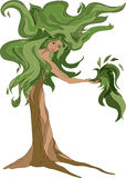 Healing nature vector illustration. Stylized tree with a human body symbolizing alternative medicine and natural vitality Stock Photos