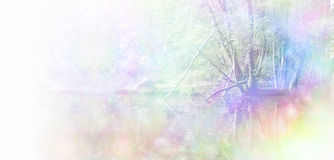 Healing Nature Website Header. Trees at the edge of water, with woodland behind and a rainbow bokeh effect applied giving a soft misty nature scene and plenty of Stock Images