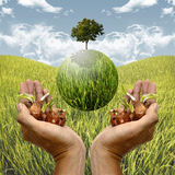 Healing the planet by plantation Stock Photography