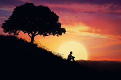 The Healing Power of Nature Stock Photo