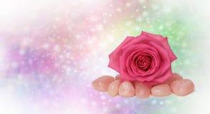 Healing Rose Quartz and Pink Rose Stock Photos