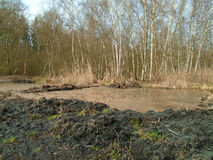 Healing spa mud and peat bog. Natural spa. Medical nature place Stock Images