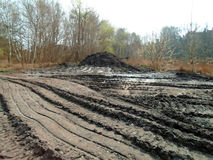 Healing spa mud and peat bog Stock Image