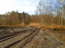 Healing spa mud and peat bog. Natural spa. Medical nature place Stock Photos