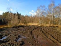 Healing spa mud and peat bog. Natural spa. Medical nature place Royalty Free Stock Image