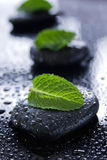Healing Stones. Black healing stones with green leaves on a wet black surface stock photo