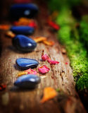 Healing Stones and petals. On old wood Stock Photography