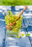 Healing tea with honey with in summer Stock Photography