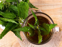 Healing tea with nettle. Tea in a glass cup on a wooden table. The source of vitamins. Royalty Free Stock Image