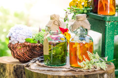Healing tincture as homemade cure. On old wooden stump Stock Photo