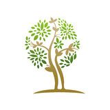 Healing Tree Leaf Icon Royalty Free Stock Photography