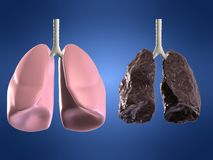 Health and bad lungss Royalty Free Stock Images