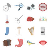 Health, beauty, service and other web icon in cartoon style.Medicine, lighting, art icons in set collection. Stock Photos