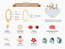 Health benefits of rice infographics.vector Stock Photography