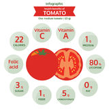 Health benefits of tomato info graphic, vegetable vector Stock Photography
