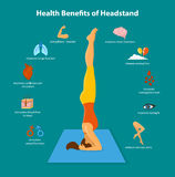 Health Benefits of Yoga Headstand. Health Benefits of a Headstand Inforgraphics Vector Illustration. Woman practicing headstand yoga sirsasana pose. human health Royalty Free Stock Images
