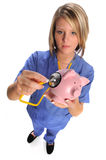 Health Care Professional Checking Swine stock images