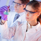 Health care professionals working in laboratory. Stock Images