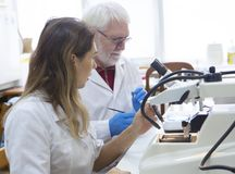Health care researchers working in life science laboratory. royalty free stock photos
