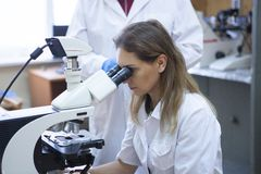Health care researchers working in life science laboratory. stock photography