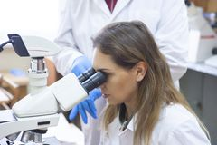 Health care researchers working in life science laboratory. royalty free stock image