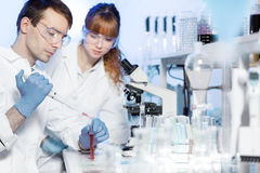 Health care students working in scientific laboratory. Stock Photo