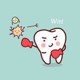 Health cartoon tooth boxing Stock Photography