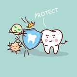Health cartoon tooth with shield Stock Photography