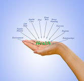 Health components Royalty Free Stock Image
