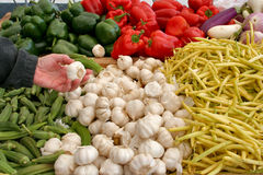Health concious shopper at a farmers market Royalty Free Stock Images