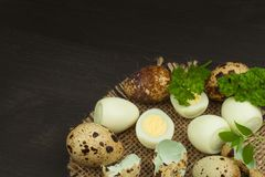 Health & Diet quail eggs on the kitchen table. Some fresh eggs of quail on the table. Quail eggs ready to eat. Stock Photo