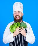 Health and dieting. I choose vegan lifestyle. Man cook hat apron hold broccoli and lettuce. Vegan recipe concept. Buy. Fresh vegetables grocery store. Vegan royalty free stock photo