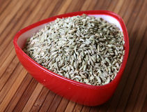 Health food'fennel seeds' Royalty Free Stock Image