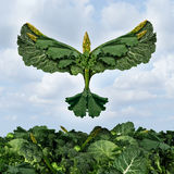 Health Food Freedom. Diet concept with green vegetables and dark leafy food shaped as a bird flying upward as a healthy eating symbol of the power of fresh Stock Image