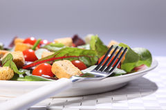 Health food green salad lunch in plate on table. Healthy green salad in a white plate, set on a weaved place mat. Salad includes cherry tomatoes and croutons Stock Photos