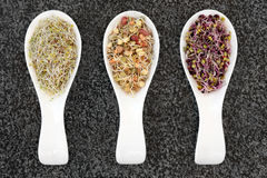 Health Food Selection Royalty Free Stock Images
