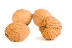 Health food walnut snack on isolated background Stock Images