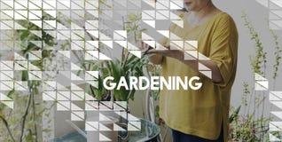 Health Gardening Hobby Leisure Environment Concept Stock Photography